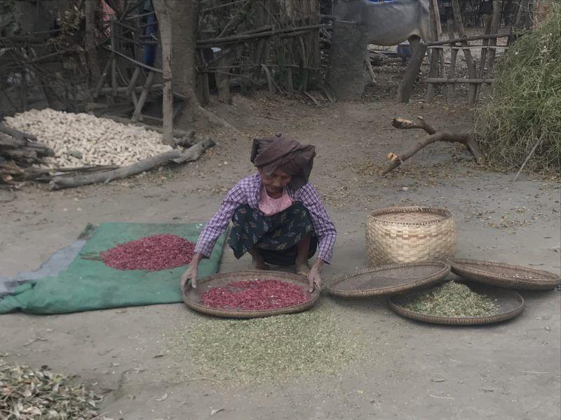 Femme dans un village autonome dans les environs de Bagan - Birmanie | Au Tigre Vanillé