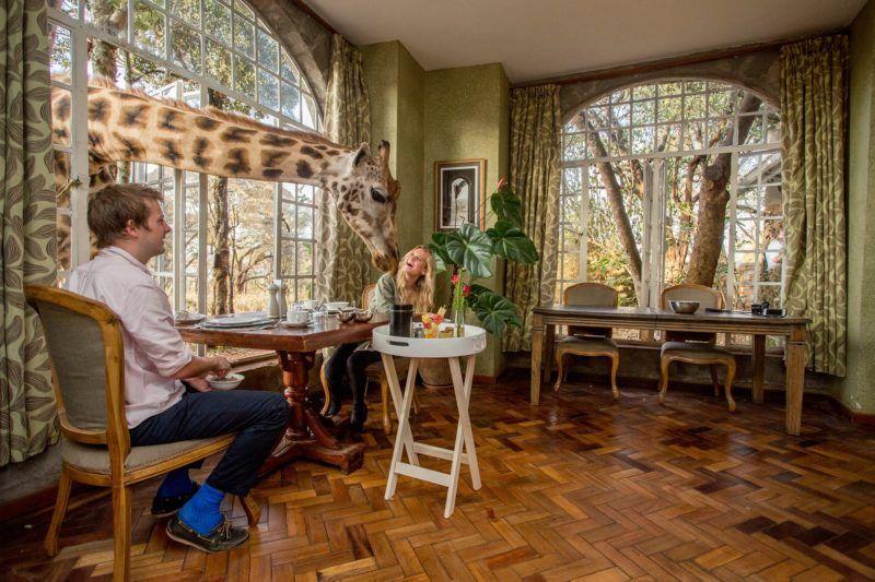 Déjeuner au Manoir des girafes à Nairobi - Kenya | Au Tigre Vanillé