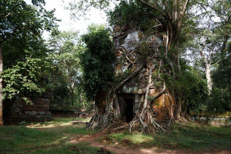 Lumière de fin de journée sur les ruines de Koh Ker - Cambodge | Au Tigre Vanillé