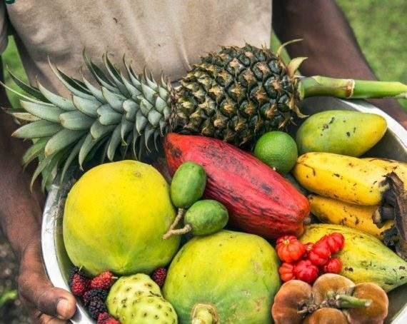 Expériences culinaires au Copal Tree Lodge - Belize | Au Tigre Vanillé