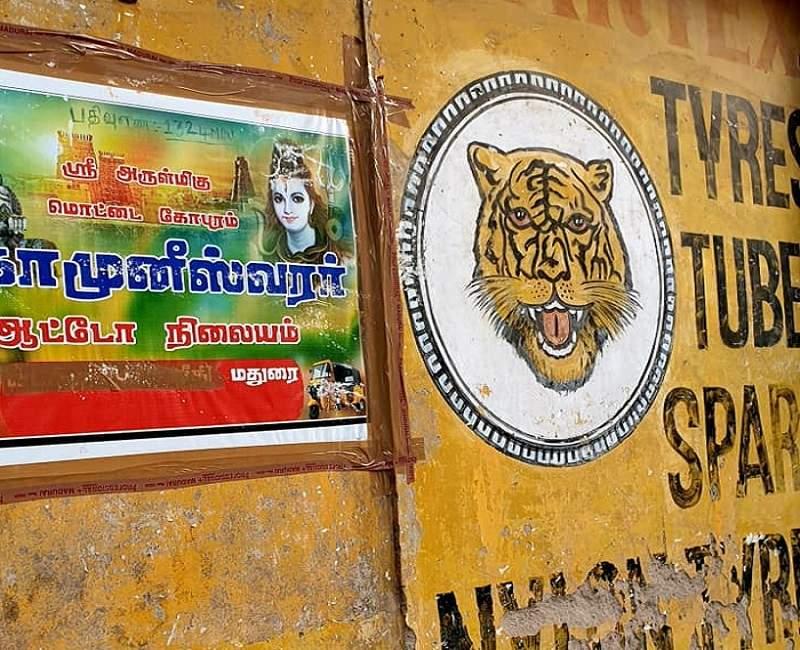Madurai récits et légendes en Inde du Sud | Au Tigre Vanillé