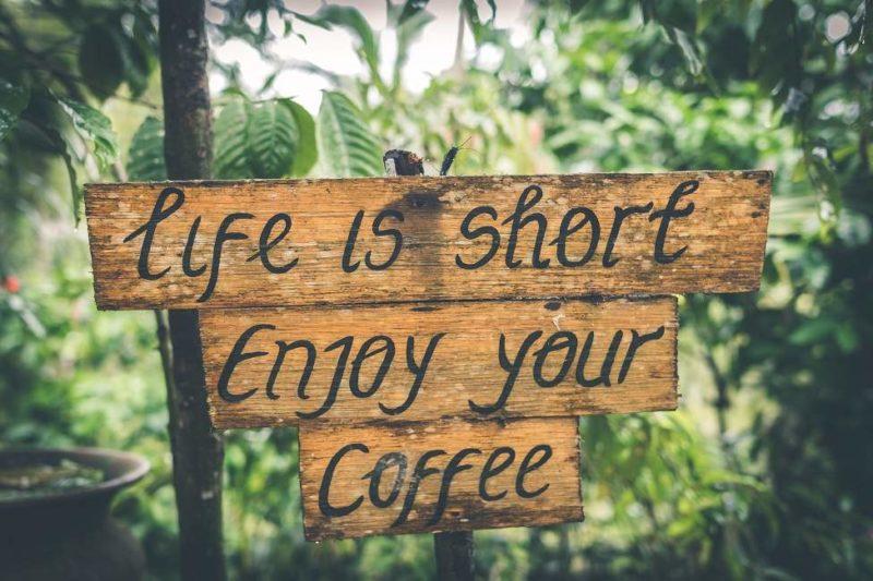 Séjour au coeur d'une plantation de café à Java - Indonésie | Au Tigre Vanillé