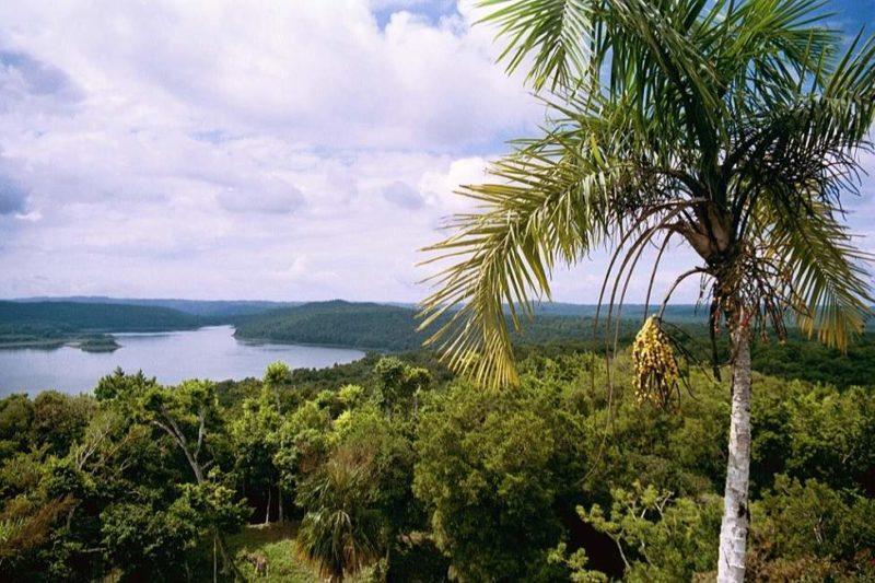 Visite de la cité de Yaxha entre lac et jungle - Guatemala | Au Tigre Vanillé