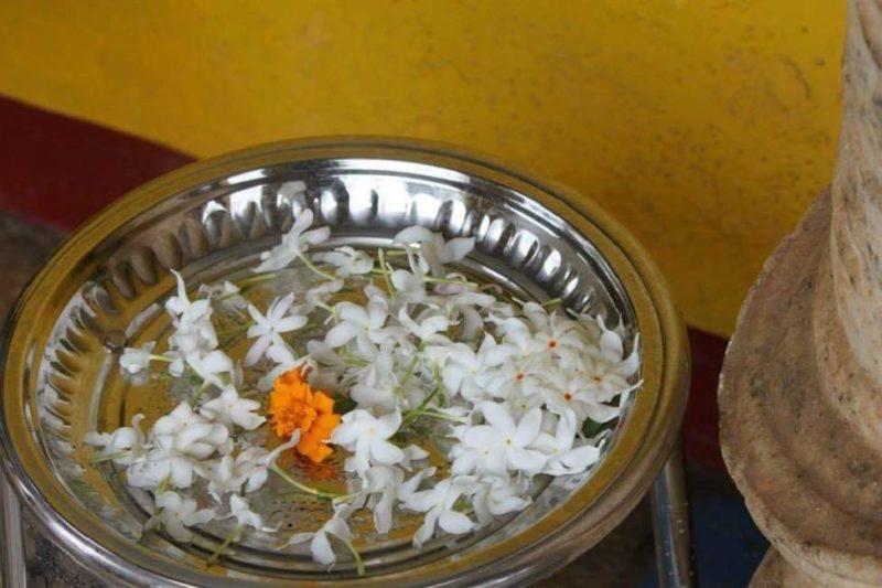 Puja de nuit et offrandes à Anuradhapura - Sri Lanka | Au Tigre Vanillé