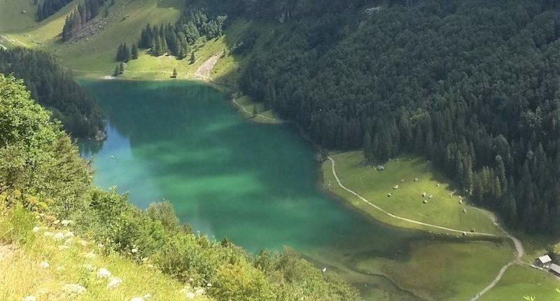 Lac bucolique émeraude en Appenzell - Suisse | Au Tigre Vanillé